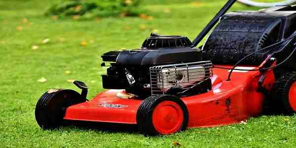 A Guide To Buy The Best Push Lawn Mower
