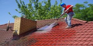 Roof pressure washer